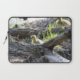 Goslings trying to figure out how to climb Laptop Sleeve