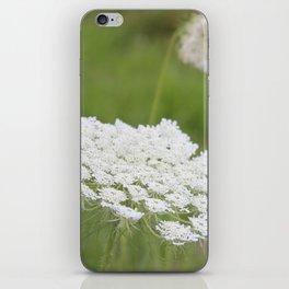 Queen Anne iPhone Skin