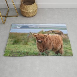 Long haired Highland cattle - Highland cow, Highlander, Heilan coo - Thurso, The Highlands, Scotland Rug