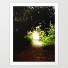 Come to the Light Art Print