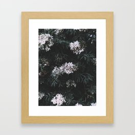 Flower Photography by Elijah Beaton Framed Art Print