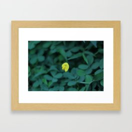 Yellow On Green Framed Art Print