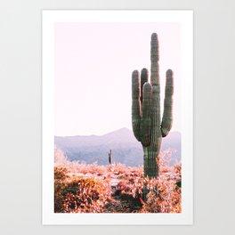 Cactus South Western Desert Art Print