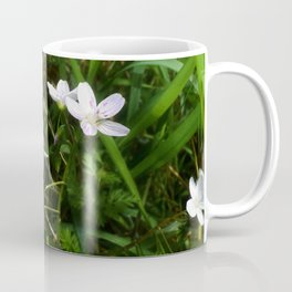 Spring Beauty 05 Coffee Mug