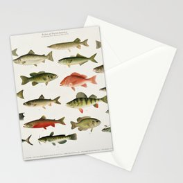 Illustrated North America Game Fish Identification Chart Stationery Cards