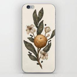 Clementine iPhone Skin