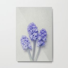 Bright Lilac Hyacinths Metal Print