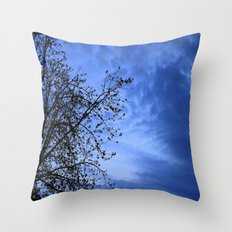 Here Comes the Night Throw Pillow