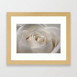 White Rose 9448 Framed Art Print