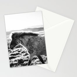Wild Horse no. 2 Stationery Cards