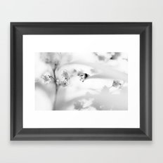 transparent Framed Art Print