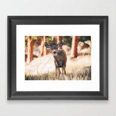 yeah i'm a deer .  Framed Art Print