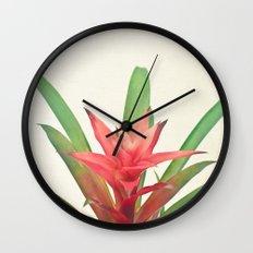 Bromelia Wall Clock