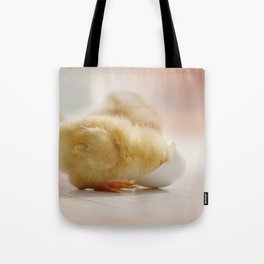 little chick looking for his origin Tote Bag