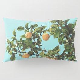 Summer Orange Tree Pillow Sham