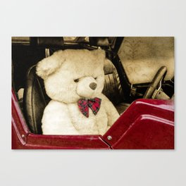 TEDDY GOES FOR A DRIVE Canvas Print