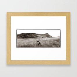 Wild Highland Spaniel Framed Art Print