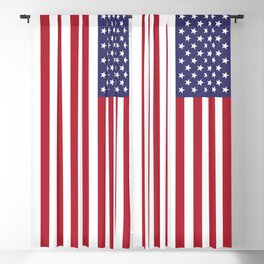 American Flag Scale G-spec 10:19 Blackout Curtain