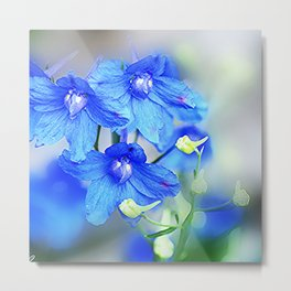 just blue Metal Print