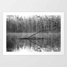 Black and White Reflections over Bluegill Bond Art Print