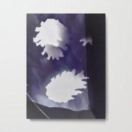 Pine cones photogram (blue) Metal Print