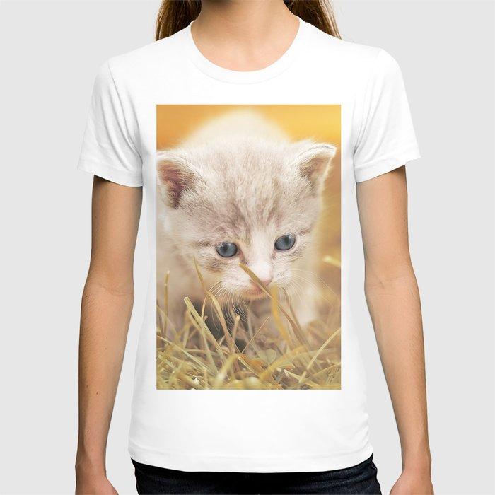 Kitten   Chaton T-shirt