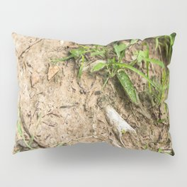 Surfacing, Killing Fields, Cambodia Pillow Sham