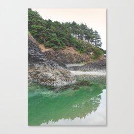 Oregon Coast Tide Pool Green Glowing Forest Coastal Cliff Rocky Landscape Beach Northwest Volcano Canvas Print