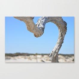 Beach Branch Canvas Print