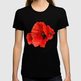 Poppies on Black T-shirt
