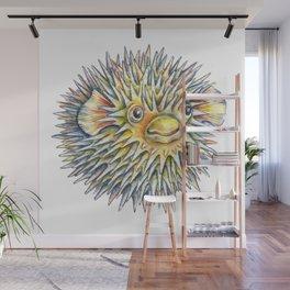 Puffer fish -  Fugu fish Wall Mural