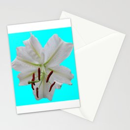 Casablanca Lily Stationery Cards