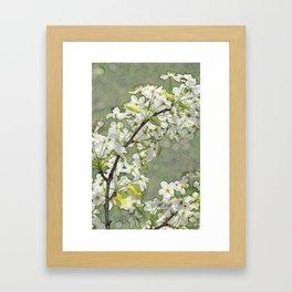 Tree in spring bloom Framed Art Print