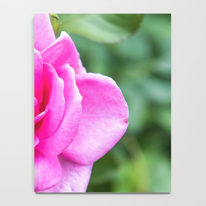 Pink Rose Notebook