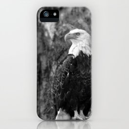 Haliaeetus leucocephalus iPhone Case