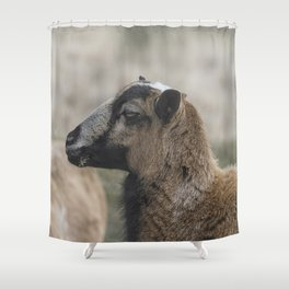 Barbados Blackbelly Sheep Profile Shower Curtain