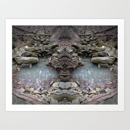 Mirrored Riverbed Art Print