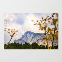 Yosemite National Park - Half Dome Mountain Canvas Print