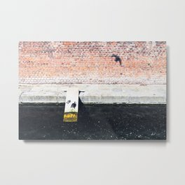 Funny turtles on a wooden plank on the Varenne canal in the center of Milan Metal Print