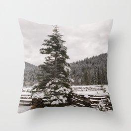 Winter Landscape - Carol Highsmith Throw Pillow