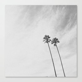 PALM TREES (B+W) Canvas Print