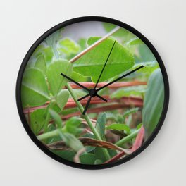 Close-up of a Clover Patch Wall Clock