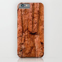 Sequoia Trees, McKinley Grove, California iPhone Case