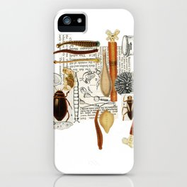 Sealife 3 iPhone Case