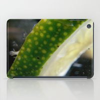 lime iPad Cases featuring Lime! by creations by Cinnamon