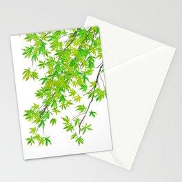 fresh green spring maple leaf Stationery Cards