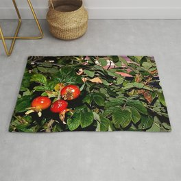 Rose Hips by the Sea, at Sunset (Wild Fresh, Bright and Ripe) Rug