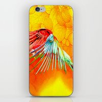 parrot iPhone & iPod Skins featuring Parrot by Ganech joe