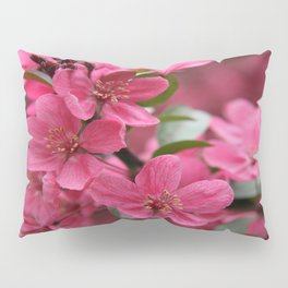 Plum Blossoms Pillow Sham