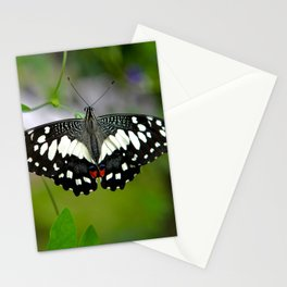 Butterfly Large Stationery Cards